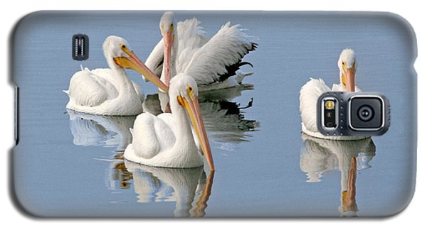Quartet's Reflections Galaxy S5 Case by Mariarosa Rockefeller