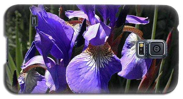 Quebec Provincial Flower Galaxy S5 Case