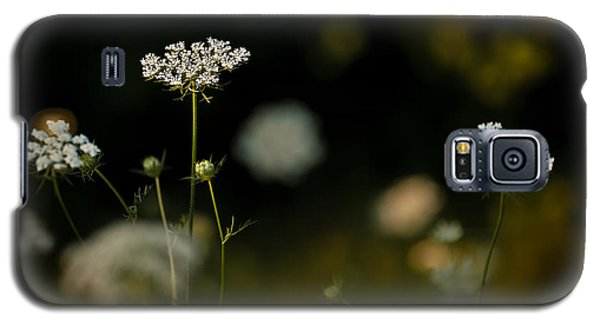 Queen Anne's Lace Galaxy S5 Case