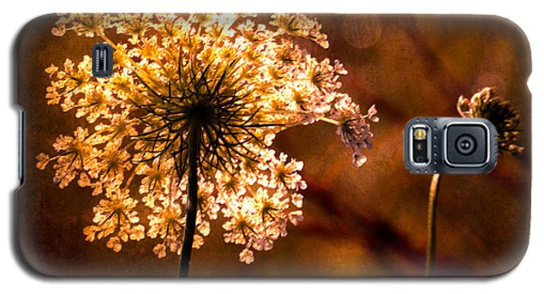 Queen Annes Lace Vintage Galaxy S5 Case