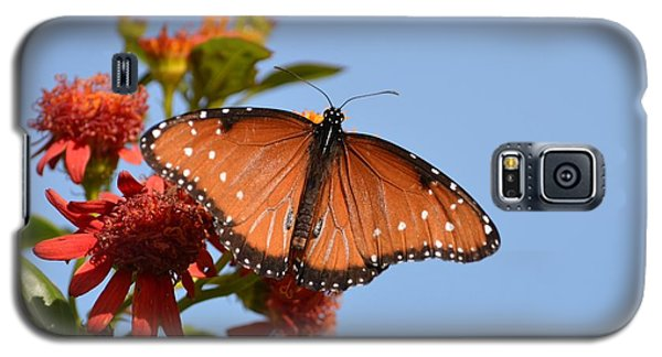 Galaxy S5 Case featuring the photograph Queen Butterfly by Debra Martz