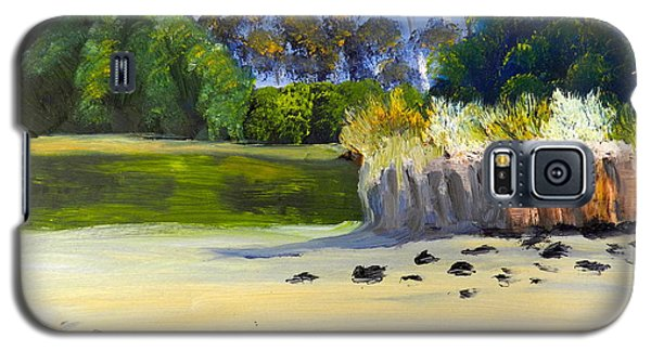 Galaxy S5 Case featuring the painting Quiet Sand By The Creek by Pamela  Meredith