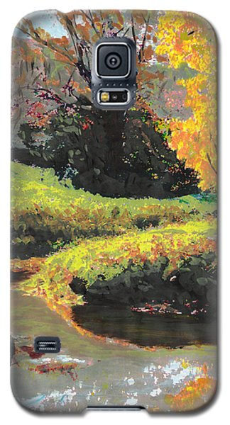 Quiet Stream Maryland Landscape Fall Colors Sketch Galaxy S5 Case