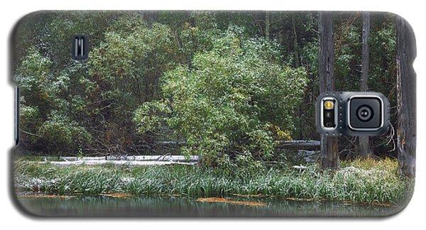 Quiet Time Along Rush Creek Galaxy S5 Case