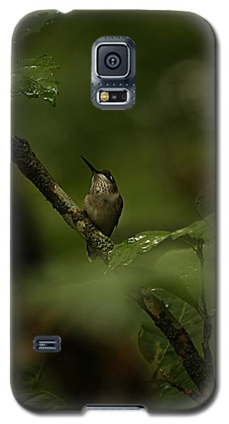 Galaxy S5 Case featuring the photograph Quietly Waiting by Tammy Schneider