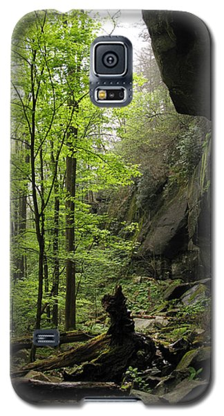 Quilliams Cave Galaxy S5 Case by Melinda Fawver