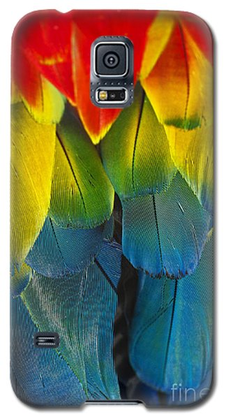Quillicious... Galaxy S5 Case