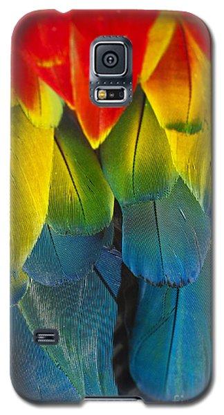 Quillicious... Galaxy S5 Case