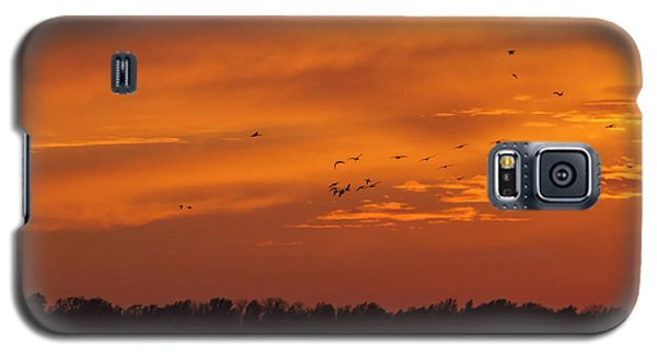 Quivira Sunset 1 Galaxy S5 Case