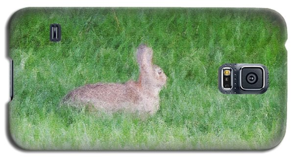 Rabbit In The Grass Galaxy S5 Case
