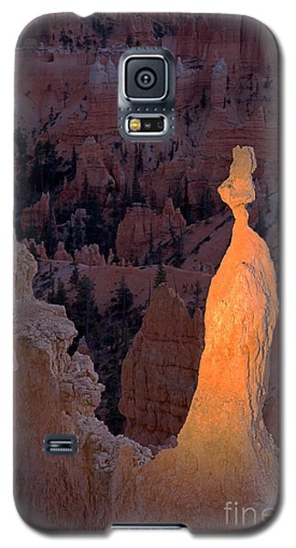 Rabbit Sunset Point Bryce Canyon National Park Galaxy S5 Case