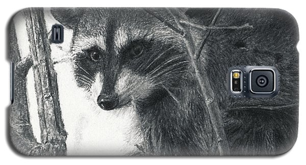 Raccoon - Charcoal Experiment Galaxy S5 Case by Joshua Martin