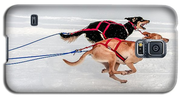Racing Sled Dogs Galaxy S5 Case