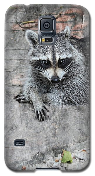 Racoon Galaxy S5 Case