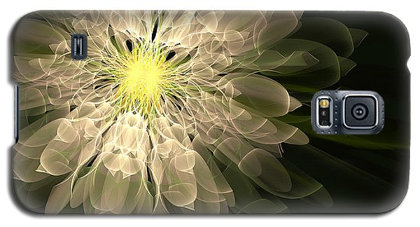 Radiance Galaxy S5 Case by Linda Whiteside