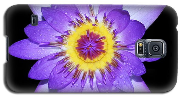 Radiant Galaxy S5 Case by Judy Whitton