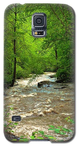 Raging Waters - West Virginia Backroad Galaxy S5 Case