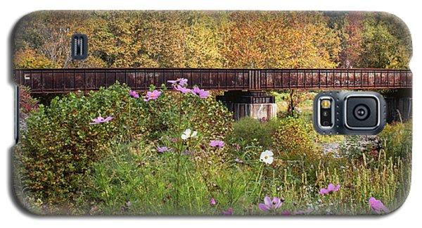 Railroad Bridge Galaxy S5 Case