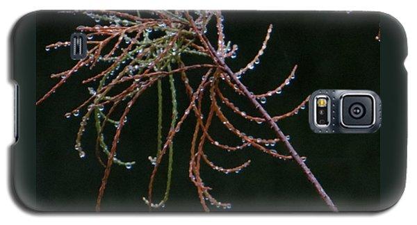 Rain Catchers Galaxy S5 Case by Joy Hardee
