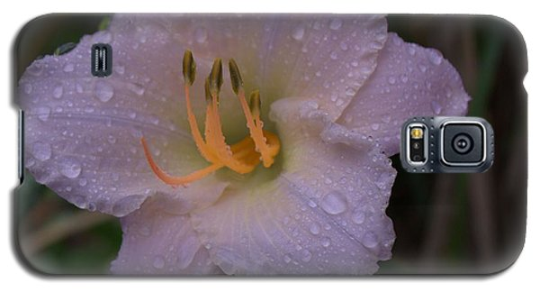 Rain Daylilly 2 Galaxy S5 Case