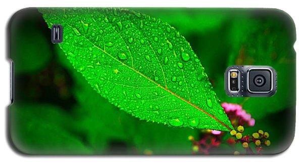 Rain Droplets Galaxy S5 Case