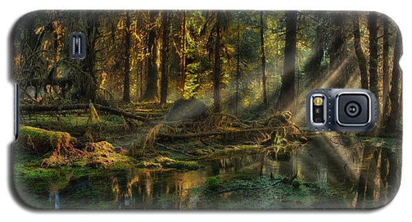 Rain Forest Sunbeams Galaxy S5 Case