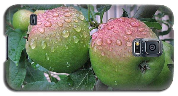 Rain Soaked Galaxy S5 Case
