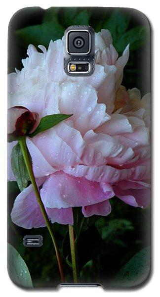 Rain-soaked Peonies Galaxy S5 Case