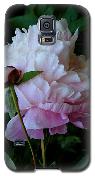Rain-soaked Peonies Galaxy S5 Case by Rona Black