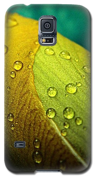 Rain Wrapped Galaxy S5 Case