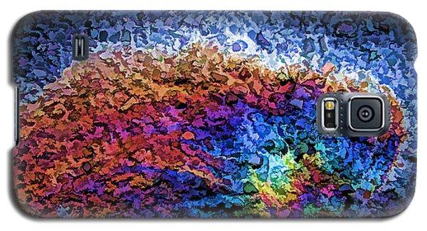Rainbow Bridge II Galaxy S5 Case by Samuel Sheats
