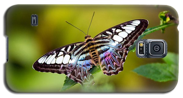 Rainbow Butterfly Galaxy S5 Case