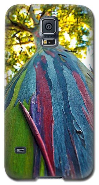 Rainbow Eucalyptus Galaxy S5 Case