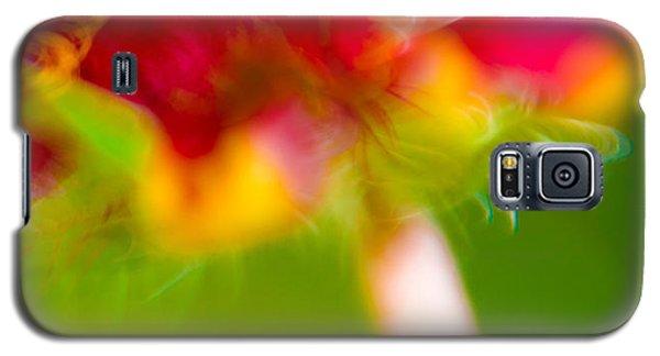Rainbow Flower Galaxy S5 Case by Darryl Dalton