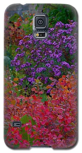 Rainbow Garden Galaxy S5 Case by Tim Good