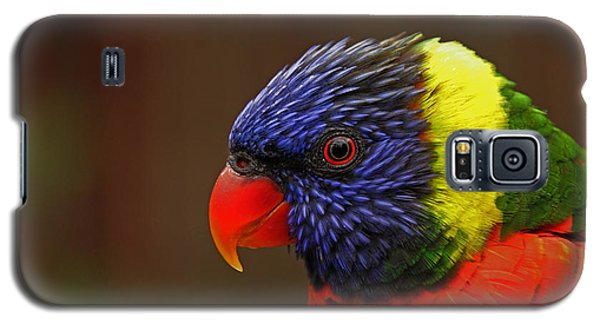 Galaxy S5 Case featuring the photograph Rainbow Lorikeet by Andy Lawless