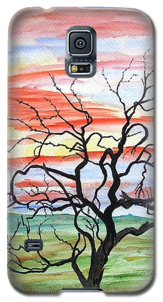 Rainbow Mesquite Galaxy S5 Case