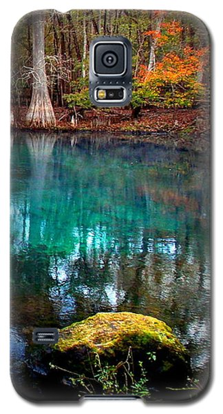 Rainbow Of Colors Manatee Springs1 Galaxy S5 Case