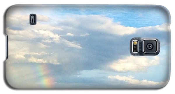 Rainbow On Laughing Dolphin With Seahorses Galaxy S5 Case