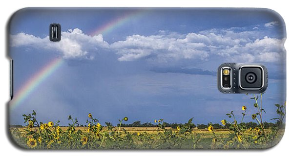 Galaxy S5 Case featuring the photograph Rainbow Over Sunflowers by Rob Graham