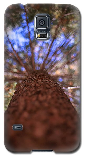 Rainbow Pine Galaxy S5 Case by Aaron Aldrich