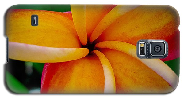 Galaxy S5 Case featuring the photograph Rainbow Plumeria by TK Goforth