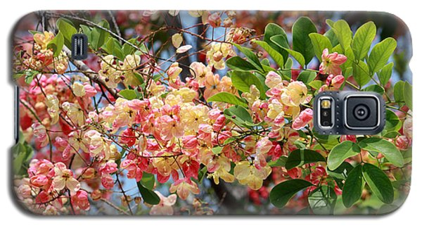 Rainbow Shower Tree Galaxy S5 Case by Karen Nicholson