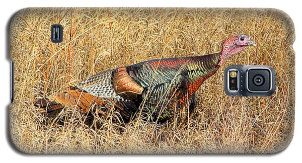 Rainbow Turkey Galaxy S5 Case