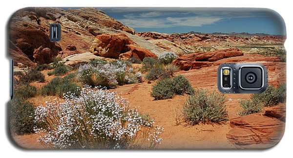 601p Rainbow Vista In The Valley Of Fire Galaxy S5 Case