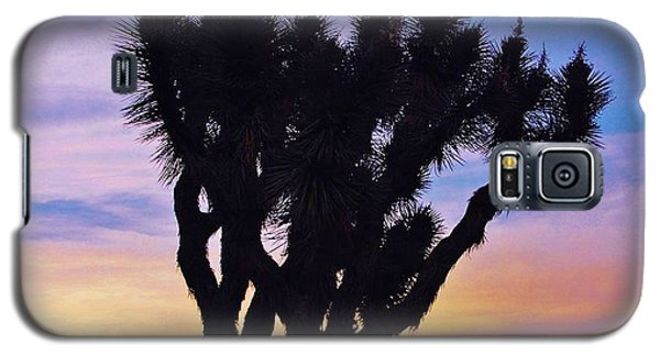 Galaxy S5 Case featuring the photograph Rainbow Yucca by Angela J Wright