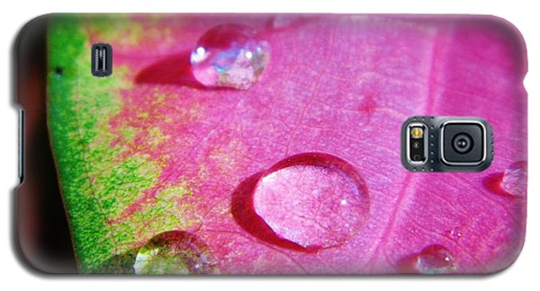 Raindrop On The Leaf Galaxy S5 Case by D Hackett