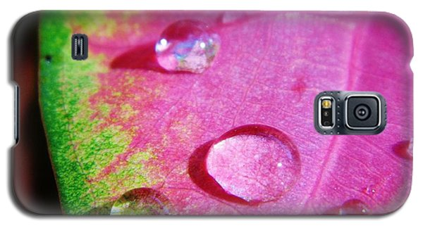 Raindrop On The Leaf Galaxy S5 Case