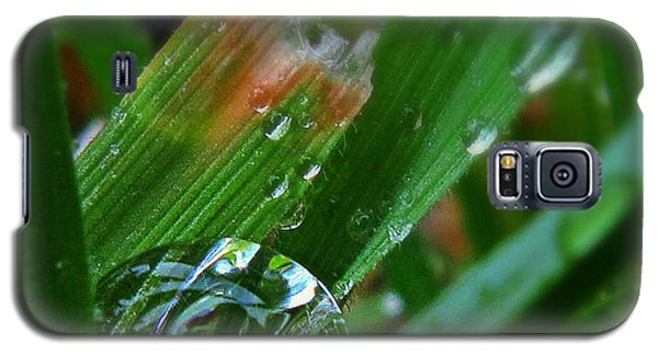 Galaxy S5 Case featuring the photograph Raindrop In The Grass by Suzy Piatt