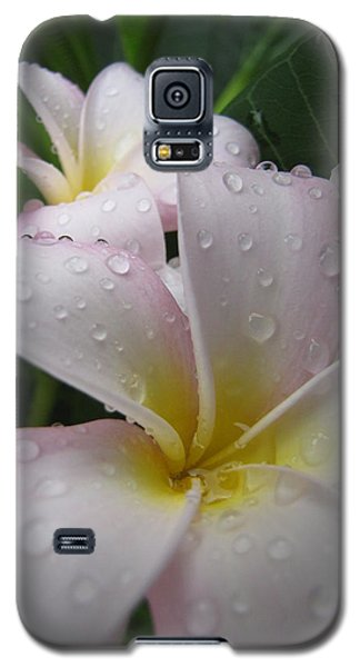 Raindrops Galaxy S5 Case by Beth Vincent